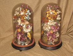 Image detail for -Victorian Glass Parlour Domes