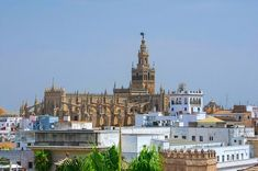 Seville Cathedral, The Cathedral of Saint Mary of the See, Seville, Spain Alcazar Seville, Gothic Cathedral, Seville Spain, Andalucia, Oh The Places You'll Go, World Heritage Sites, Paris Skyline, Beautiful Places, Spanish Architecture