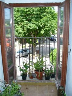 French doors with juliette balcony