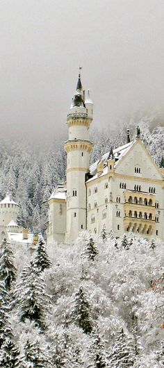 Neuschwanstein Castle near Hohenschwangau and Füssen in southwest Bavaria, Germany • photo: Luiz Pires on Flickr