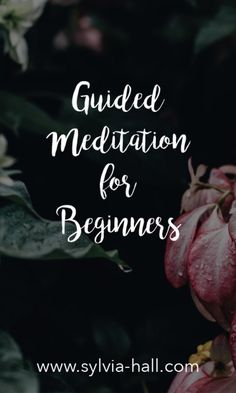 """Grab my NEW free download: """"Guided Meditation for Beginners"""""""