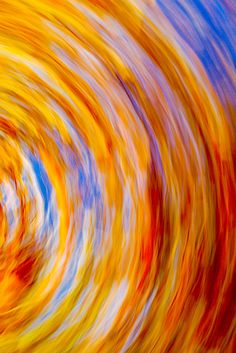 Hue and Eye Photography - A swirl of autumn colors, Charleston, SC  © Doug Hickok  All Rights Reserved