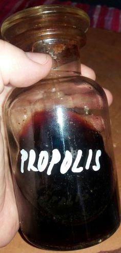 PROPOLIS Propolis je látka podobná pryskyřici, kterou včelky sbírají z pupenů a…