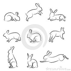 Rabbit drawing set by Sabri Deniz Kizil, via Dreamstime
