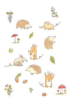 rats and hedgehogs illustration