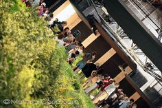 #Biennale #Venezia #architettura #architecture #green