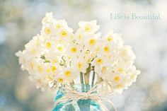 Beautiful daffodils in mason jar - photo by Aimee Pool Photography