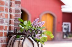 Wedding Details and Decor for a Spring Outdoor Wedding at Crooked Willow Farms, Larkspur CO Lilac Wedding Flowers Wedding Crafts, Wedding Decorations, Wedding Ideas, Lilac Wedding Flowers, Willows Farm, Wedding 2017, Farms, Wedding Details, Sugar