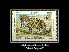 """Afghanistan Stamp Leopard with Cubs"""" (1985)"""