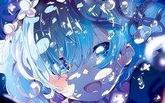 Anime Re:ZERO -Starting Life In Another World-  Rem (Re:ZERO) Re:Zero Fond d'écran