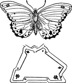 B-P's sketch of a butterfly (hiding details of a military fort) Robert Baden Powell, Beaver Scouts, Wood Badge, Scout Activities, Scout Camping, Girl Guides, Cub Scouts, Butterfly Wings, Cubs