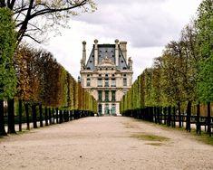 Paris Photography - Jardin des Tuileries - Green Print Elegant Parisian Garden - Autumn Decor - French Architecture
