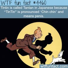 Tintin in Japanese is Tantan -  I have NO Comment... ~WTF!?!weird & Interesting fun facts