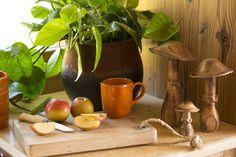 Bio, Decoration, Gardens, Fall Home Decor, Pet Store, Food, Decor, Decorations, Decorating