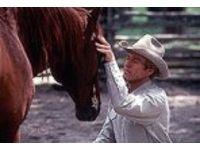 Pferdeflüsterer, Der #Ciao