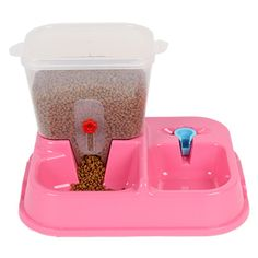 Cat food and water Bowls – Accessories & Products for Cats