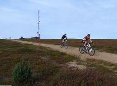 Saariselkä MTB 2013, XCM (14) | Saariselkä.  Mountain Biking Event in Saariselkä, Lapland Finland. www.saariselkamtb.fi #mtb #saariselkamtb #mountainbiking #maastopyoraily #maastopyöräily #saariselkä #saariselka #saariselankeskusvaraamo #saariselkabooking #astueramaahan #stepintothewilderness #lapland