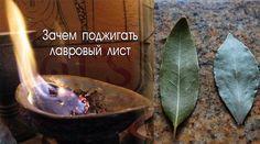 Каждый дом обладает своим ароматом. У кого-то он пахнет духами или кофе, у других же домашней едой или теплым молоком. Но бывают жилища, в которых присутствует запах невероятной свежести и чистоты. При этом вы чувствуете себя там очень уютно, так как это не искусственный запах освежителя воздуха. Очень может быть, что эти люди знают способ,