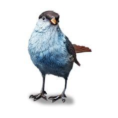 ldavi-fallingleavesautumntea-elderberrybird2.png ❤ liked on Polyvore featuring birds, animals and blue