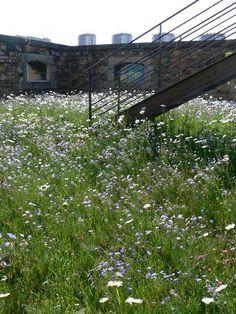 15-Fort-St-Jean « Landscape Architecture Works   Landezine: