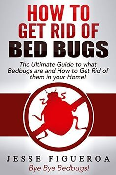 what causes bed bugs? http://getridofbedbugsfast/ #what