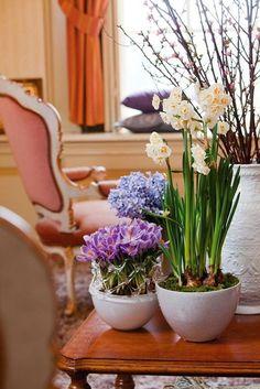 Живые цветы в интерьере ~ Sweet home