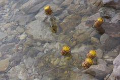 Untitled by SimoneGabatel #nature #photooftheday #amazing #picoftheday #sea #underwater