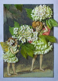 Wonderful Ribbon Embroidery Flowers by Hand Ideas. Enchanting Ribbon Embroidery Flowers by Hand Ideas. Embroidery Designs, Embroidery Applique, Embroidery Stitches, Ribbon Art, Ribbon Crafts, Ribbon Flower, Hydrangea Flower, Crazy Quilting, L'art Du Ruban