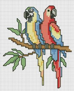 Borduurpatroon Kruissteek Papegaai - Parkiet *Embroidery Cross Stitch Pattern…