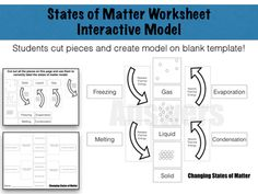 This includes a blank graphic organizer with cutouts. Students cut out pieces of the model and put them in the correct place to complete the chart. Answers are included. States Of Matter Worksheet, Matter Worksheets, 5th Grade Science, Physical Science, Google Classroom, Graphic Organizers, Science Activities, 5th Grades, Physics
