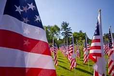 Memorial Day: A History Lesson for You & the Kids