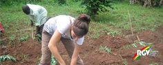 Bettina berichtet von ihren spannenden #Erfahrungen als #Volunteer in #Uganda. #Erfahrungsbericht von der #Farmarbeit in Uganda, hier lesen!