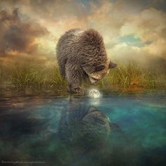 Little moon – Photo manipulation by Liu Even