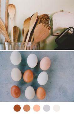 Colour Palettes Eggs