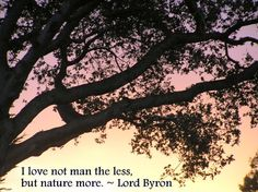"""""""I love not man the less, but nature more"""" Lord Byron"""