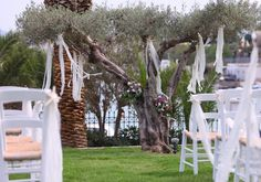 Kim & Daz Wedding by the Sea side Sea Side, Ladder Decor, Arch, Outdoor Structures, Weddings, Garden, Home Decor, Longbow, Garten