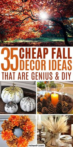 35 AMAZING fall decor ideas for your home that you NEED to try! These DIY fall decor ideas will make your home look amazing! 35 AMAZING fall decor ideas for your home that you NEED to try! These DIY fall decor ideas will make your home look amazing! Thanksgiving Diy, Thanksgiving Countdown, Diy Fall Wreath, Fall Diy, Fall Wreaths, Vintage Fall Decor, Fall Home Decor, Holiday Decor, Autumn Decorations