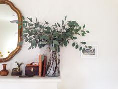 fresh eucalyptus at home (@jessicacomingore on instagram).