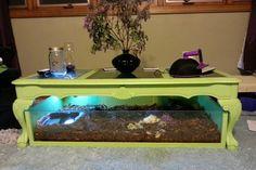 DIY Under-Table Habitat - petdiys.com