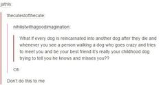 tumblrs-greatest-hits-every-dog-ever