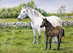 White Horse and Foal. A watercolour by Sylvia Twiss.