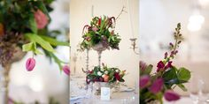 I assisted Jenni Elizabeth at this beautiful winter Nooitgedacht wedding. Winter Wedding Decorations, Plants, Projects, Beautiful, Log Projects, Blue Prints, Plant, Planets