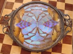 """1930s Iron Butterfly Cocktail/Serving Tray • Signed by F. Billére, 4-3/8"""" Diameter of Tray X 18-1/4"""" Long (handle to handle) X 1-3/16"""" Tall  http://www.artdecocollection.com/1000.htm"""