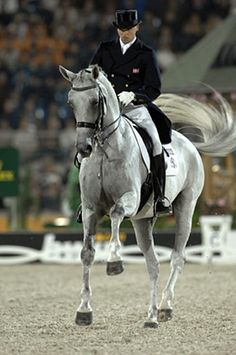 By far one of the most legendary dressage horses ever, Blu Hors Matinee