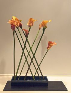The Nordic Lotus Ikebana Blog: Abstract Cala Lily - Mass and Lines
