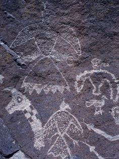 Ancient Pueblo-Anasazi Rock Art with Birds and Snakes