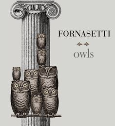 Piero Fornasetti: Owl Products