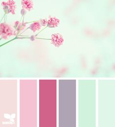 I like the rich, deep pink, dirty lilac and mint green combination featured in this colour palette and this is one of the colour palettes that inspired my choice of colour palette for 'Everyday Women'.