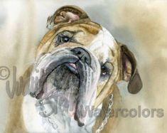 "English Bulldog, Brown & White, AKC Non Sporting, Pet Portrait Dog Art Watercolor Painting Print, Wall Art, Home Decor, ""Angus"" Judith Stein"
