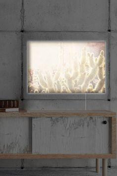 Oliver Gal Gallery Cactus LED Lightbox Art